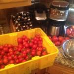 tomatoe bin